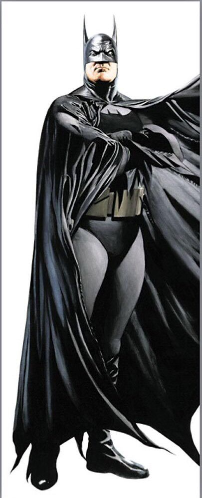 Batman Door Poster $20