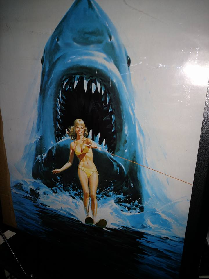 Jaws  $100